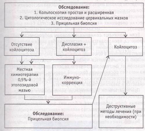 Рис. Схема дифференцированного