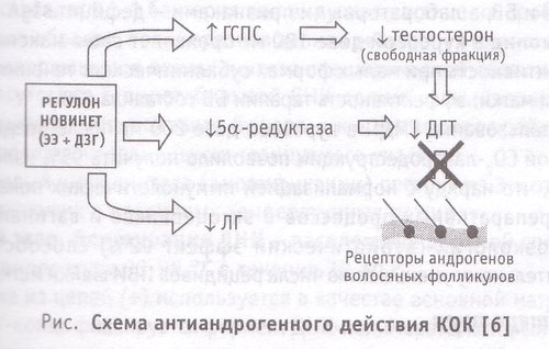 Схема антиандрогенного