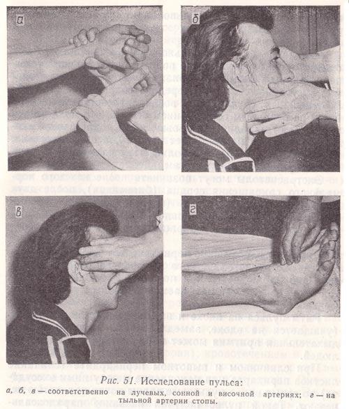 Исследование пульса